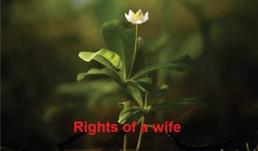 Rights of a wife